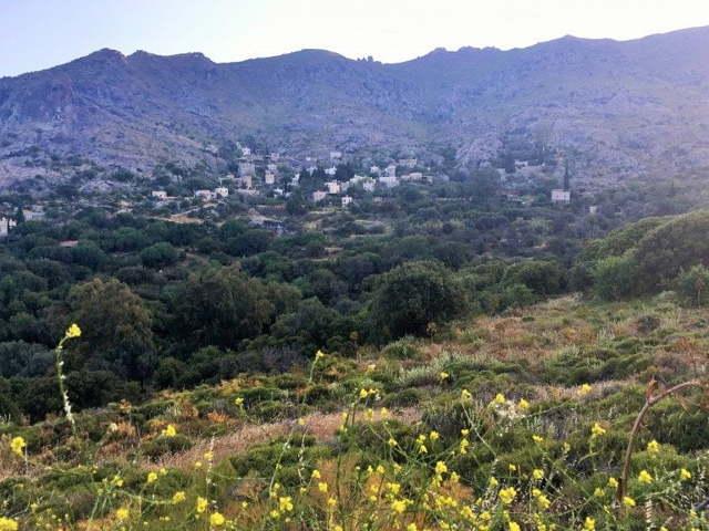 bodrum'da alışılmışın dışında bir keşif noktası: karakaya köyü